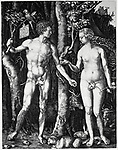&Uuml; Kunst, D&uuml;rer, Albrecht, (1471 - 1528), Grafik, <br /> &quot;Adam und Eva im Paradies&quot;, um 1505, Stich, Privatsammlung,<br /> <br /> <br /> Europa, Grafiken, Sakralkunst, Religion, Christentum, biblische Szene, Renaissance, Akt, nackt, Nacktheit,<br /> ~<br /> fine arts, D&uuml;rer, Albrecht, (1471 - 1528), graphics, &quot;Adam und Eva im Paradies&quot; (&quot;Adam and Eve in paradise&quot;), circa 1505, engraving, private collection, Europe, religious art, religion, christianity, biblical scene, renaissance, nude, naked, nakedness, Duerer, Durer,