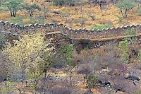 Ancient wall around old fort above Udaipur, India.