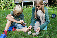 Kinder spielen mit jungen Hühnerküken, Küken im Garten, Zwerghuhn, Zwerghühner, glückliche Hühner, freilaufende Hühner, artgerechte Tierhaltung, Landidylle, Idylle