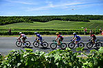 The peloton travel through Champagne country during Stage 4 of the 2019 Tour de France running 213.5km from Reims to Nancy, France. 9th July 2019.<br /> Picture: ASO/Pauline Ballet | Cyclefile<br /> All photos usage must carry mandatory copyright credit (© Cyclefile | ASO/Pauline Ballet)