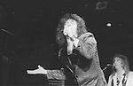 Fanz 1987