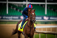 LOUISVILLE, KY - MAY 03: Irish War Cry, owned by Isabelle de Tomaso and trained by H. Graham Motion, exercises in preparation for the Kentucky Derby at Churchill Downs on May 03, 2017 in Louisville, Kentucky. (Photo by Alex Evers/Eclipse Sportswire/Getty Images)