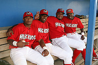 June 19, 2009:  Luis De La Cruz, Hector Alvarez, Jairo Martinez, and D'Marcus Ingram of the Batavia Muckdogs during a ceremony to award the 2008 NY-Penn League Champions before a game at Dwyer Stadium in Batavia, NY.  The Batavia Muckdogs are the NY-Penn League Short Season Class-A affiliate of the St. Louis Cardinals.  Photo by:  Mike Janes/Four Seam Images