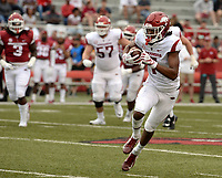 NWA Democrat-Gazette/ANDY SHUPE<br /> Arkansas receiver Trey Knox carries the ball into the end zone Saturday, April 6, 2019, during the Razorbacks' spring game in Razorback Stadium in Fayetteville. Visit nwadg.com/photos to see more photographs from the game.
