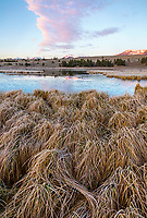 Yellowstone National Park, WY: Sunrise on Swan Lake Flats with frosted grasses and ice on the lake