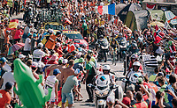 """race leader Steven Kruijswijk (NED/LottoNL-Jumbo) coming through """"Dutch Corner"""" (#7) on Alpe d'Huez<br /> <br /> Stage 12: Bourg-Saint-Maurice / Les Arcs > Alpe d'Huez (175km)<br /> <br /> 105th Tour de France 2018<br /> ©kramon"""