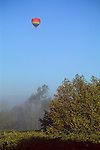 Hot air balloon over vineyard along the Russian River, near Oakville, Napa Valley, Napa County, California