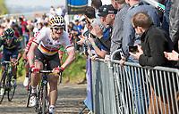 German Champion André Greipel (GER/Lotto Soudal) up the Oude Kwaremont<br /> <br /> 101st Ronde van Vlaanderen  2017 (1.UWT)<br /> 1day race: Antwerp-Oudenaarde (260km)