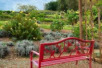 Bench in gardens at Ali'i Kula Lavender Farm. Maui, Hawaii