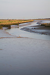 Mudflats and marsh at low tide, Wolsey's Creek, River Blyth, Reydon Marshes, Suffolk, England