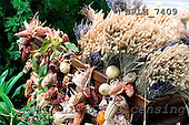 Luiz, FLOWERS, photos, BRLH7409,#f# Blumen, Natur, flores, naturaleza