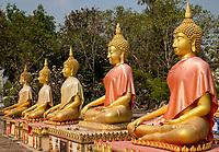 Wat Phai Rong Wua, Suphan Buri - 13.02.2019