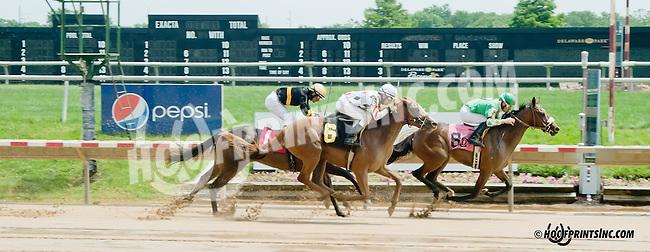 Star Omega winning at Delaware Park on 6/13/13