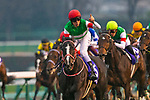 FUNABASHI,JAPAN-DEC 22: Lys Gracieux #6,ridden by Damian Lane,wins the Arina Kinen (The Grand Prix) at Nakayama Racecourse on December 22,2019 in Funabashi,Chiba,Japan. Kaz Ishida/Eclipse Sportswire/CSM