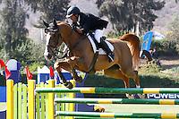 Equitacion 2014 Gran Premio Longines