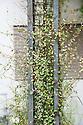 Falling Leaves show garden, Hampton Court Flower Show 2012.