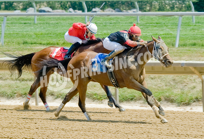 Cat In Motion winning at Delaware Park on 7/12/12
