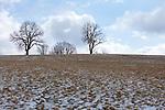 Europa, DEU, Deutschland, Baden-Wuerttemberg, Landkreis Reutlingen, Sonnenbuehl, Schwaebische Alb, Winter, Schnee, Baeume, Natur, Umwelt, Landschaft, Jahreszeiten, Stimmungen, Landschaftsfotografie, Landschaften, Landschaftsphoto, Landschaftsphotographie, Wetter, Wetterelemente, Wetterlage, Wetterkunde, Witterung, Witterungsbedingungen, Wettererscheinungen, Meteorologie, Wettervorhersage, <br /> <br /> [Fuer die Nutzung gelten die jeweils gueltigen Allgemeinen Liefer-und Geschaeftsbedingungen. Nutzung nur gegen Verwendungsmeldung und Nachweis. Download der AGB unter http://www.image-box.com oder werden auf Anfrage zugesendet. Freigabe ist vorher erforderlich. Jede Nutzung des Fotos ist honorarpflichtig gemaess derzeit gueltiger MFM Liste - Kontakt, Uwe Schmid-Fotografie, Duisburg, Tel. (+49).2065.677997, ..archiv@image-box.com, www.image-box.com]
