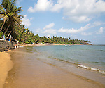 Tropical sandy beach and coconut palm trees curving around a bay, Mirissa, Sri Lanka