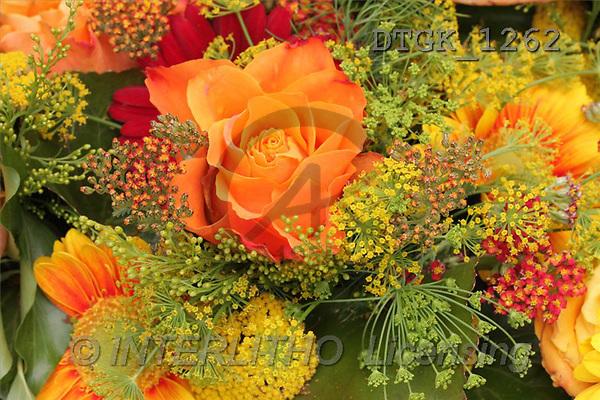 Gisela, FLOWERS, photos(DTGK1262,#F#) Blumen, flores, retrato