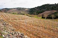 Domaine Mas Champart St Chinian. Languedoc. Terroir soil. The vineyard. France. Europe.