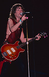 Night Ranger<br />