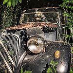 Classic black car from the 1950's hidden in the undergrowth with large headlights