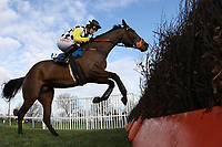 Franklin Roosevelt ridden by Noel Fehily in jumping action during the Connolly's Red Mills Horsefeed National Hunt Novices' Handicap Hurdle