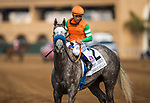 DEL MAR, CA - JULY 29: Unique Bella with Mike Smith wins the Clement L Hirsch Stakes at Del Mar on July 2, 2018 in Del Mar, California.(Photo by Alex Evers/Eclipse Sportswire)