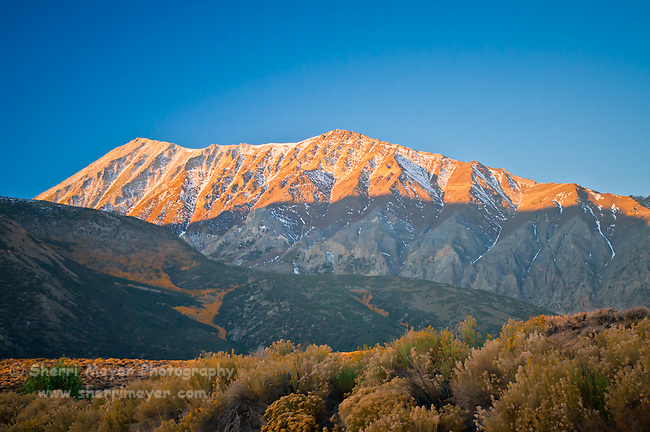 First light on the peak, Eastern Sierra, California.