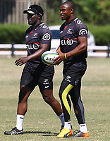 Lwazi Mvovo with Makazole Mapimpi during the cell c sharks pre season training session at  Growthpoint Kings Park ,22,01,2018 Photo by Steve Haag)