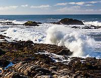 Waves send spray skyward as the crash against the rocky California coast.