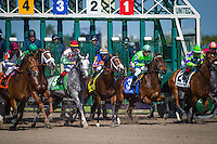 HALLANDALE, FL - JANUARY 28: The break for the Poseidon Stakes at Gulfstream Park on January 28, 2017 in Hallandale Beach, Florida. (Photo by Zoe Metz/Eclipse Sportswire/Getty Images)
