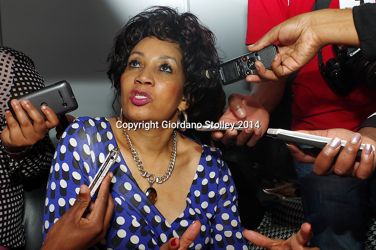 DURBAN - 21 October 2014 - Minister of Human Settlements Lindiwe Sisulu being interviewed by journalists at the South African Planning Institute conference in Durban tells journalists that those younger than 40 years of age are not entitled to free housing, unless they are the heads of orphan-led households or are disabled. Picture: Allied Picture Press/APP