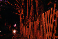 Night lights illuminate a fence along a remote part of highway 1 north of Fort Bragg..