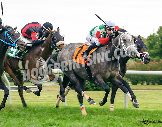 On A Star winning at Delaware Park on 9/26/16