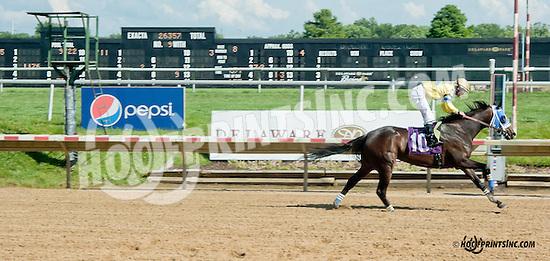 Breezy Pointess winning at Delaware Park on 6/29/13
