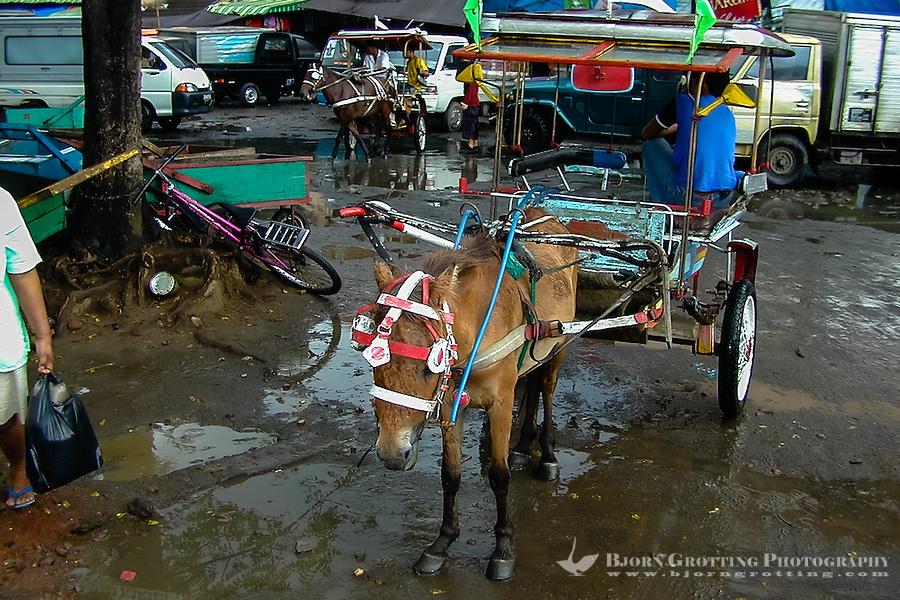 Indonesia, Sulawesi, Manado. The market in Manado harbour. Horse transport.
