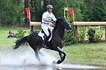 20170617 Luhmühlen CIC*** Meßmer Trophy - Deutsche Meisterschaft