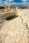 Sandstone Bluffs, Vermillion Cliffs National Monument, Paria Plateau, Arizona