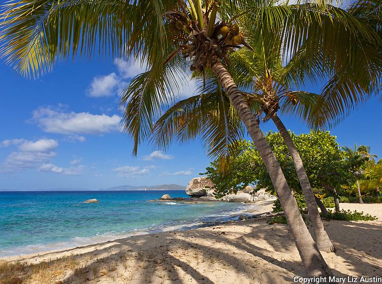 Virgin Gorda, British Virgin Islands, Caribbean <br /> Palm trees shade the beach on Spring Bay, Spring Bay National Park