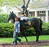 Savvy Hester before The Christiana Stakes at Delaware Park on 7/10/13