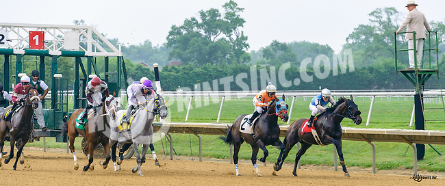 Racetrack Romance winning at Delaware Park on 7/9/16