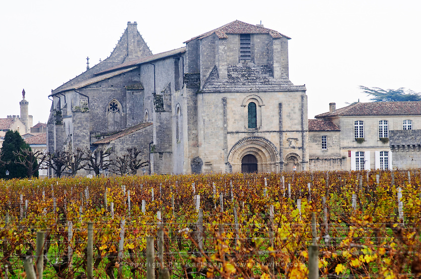 Vineyard. Collegiale church. Chateau Clos Fourtet, Saint Emilion, Bordeaux, France