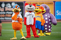 Akron RubberDucks mascots Webster the Duck, Orbit, Rubberta the Duck, and Homer (L-R) before an Eastern League game against the Reading Fightin Phils on June 4, 2019 at Canal Park in Akron, Ohio.  Akron defeated Reading 8-5.  (Mike Janes/Four Seam Images)
