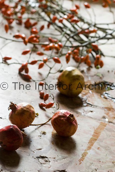 Close up of the stone sink in the rustic kitchen filled with rose hips and pomegranates