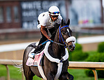LOUISVILLE, KENTUCKY - MAY 01: Restless Rider prepares for the Kentucky Oaks at Churchill Downs in Louisville, Kentucky on May 01, 2019. Evers/Eclipse Sportswire/CSM