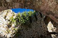 Catherineburg Ruins<br /> Virgin Islands National Park<br /> St. John, U.S. Virgin Islands