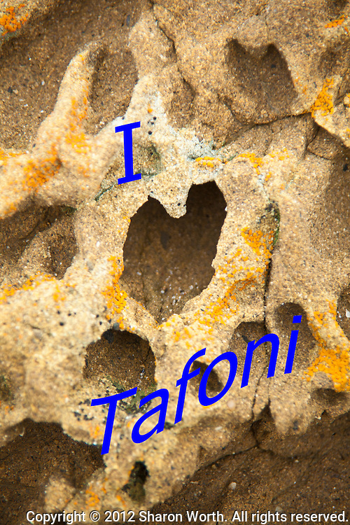 "A tofoni formation in the shape of a heart lends itself to the message, ""I Love Tafoni"".  Bean Hollow State Beach on the California coast."