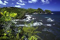 Onomea Bay and the Hawaii Tropical Botanical Garden found on the big island